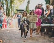 fotografias de boda, tendencias boda 2018