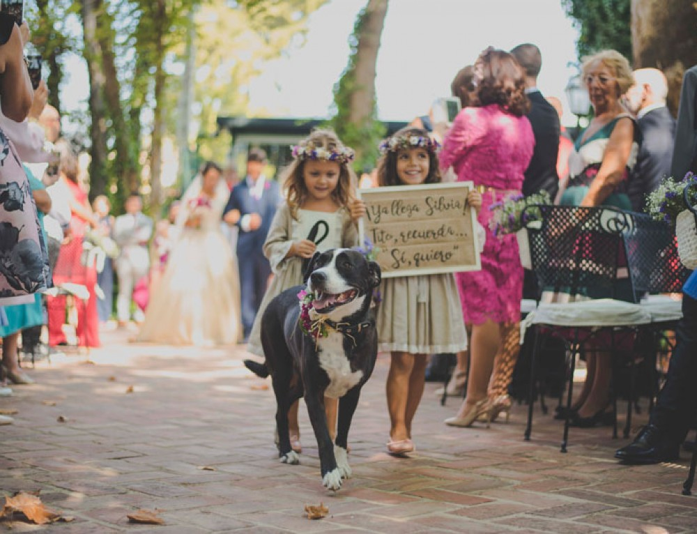 I-blue Bodas os muestra las tendencias en fotografias de boda 2018